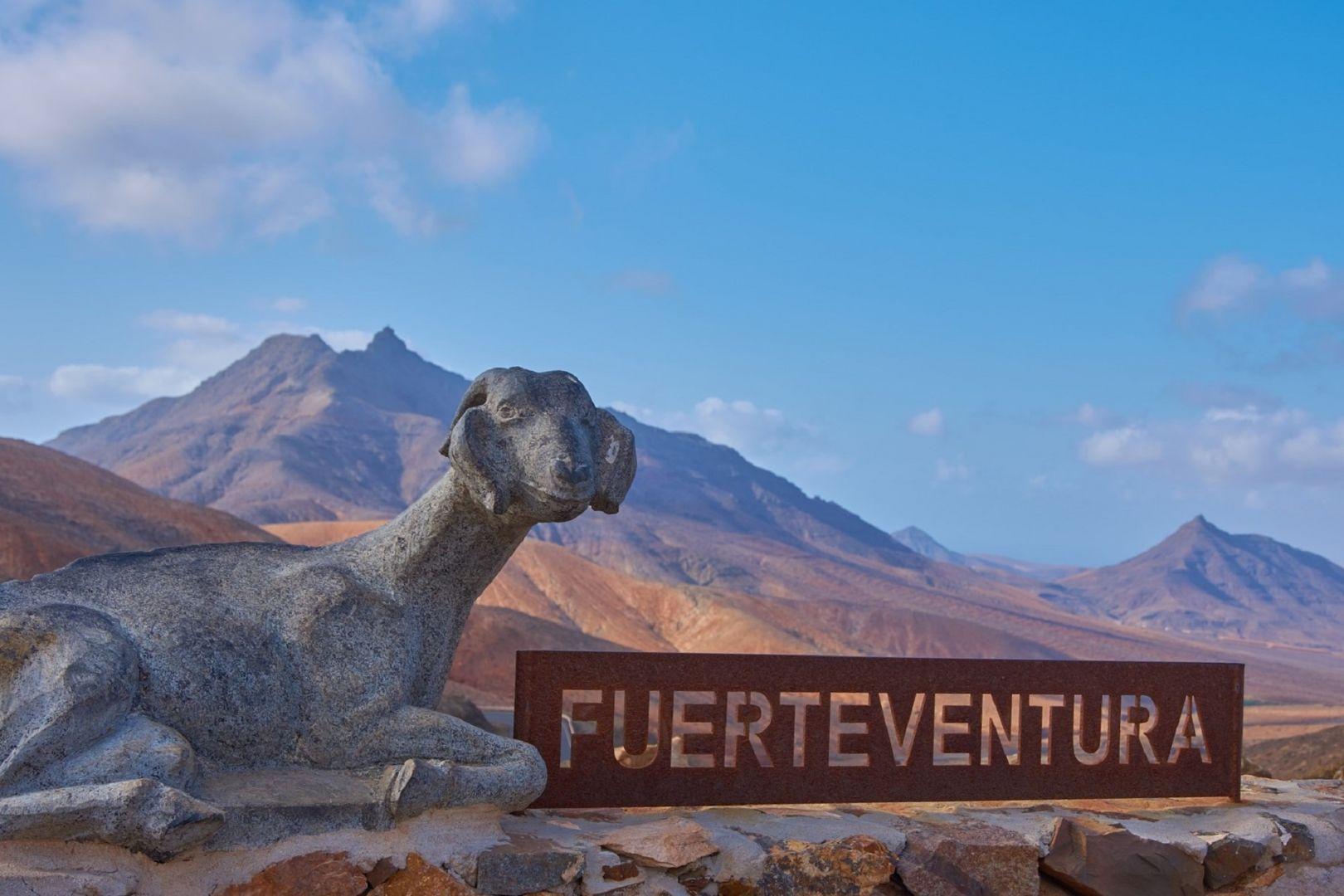 koa cyzli symbol wyspy Fuerteventura