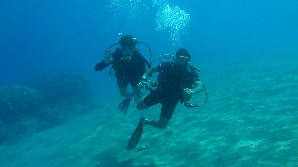 Dwóch nurków podczas nurkowania